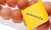 Brčko: Kazna zbog salmonele 2.050 maraka