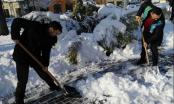 Asocijacija mladih Brčko pokazala kako treba biti društveno odgovoran, uzeli lopate u ruke i čistili snijeg