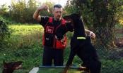 Brčak Denis Selimbašić od malena gaji ljubav prema psima, a sada ima i apartmane za pse