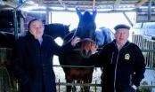 Aziz Aga intenzivno vrši pripreme konja za snimanje filma koje počinje početkom aprila mjeseca