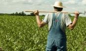 Brčko: Poljoprivrednicima bezpovratna sredstva za razvoj proizvodnje