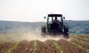 Brčko: Usvojen zaključak za poništenje javnog konkursa za zakup poljoprivrednog zemljišta