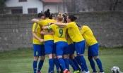 Lokomotiva Brčko: Lokosice u finalu