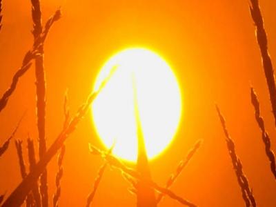 Toplotni udar u punom jeku, temperature rastu do 36 stepeni, moguće i nevrijeme