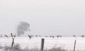 """Dok kod nas """"gori zemlja"""", na drugoj strani svijeta kenguri se igraju u snijegu"""