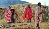Afrika se sprema za solarni procvat uz koji će stotine miliona kuća prvi put dobiti struju