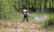 Brčko: Uništavanje komaraca otežava promjenljivo vrijeme