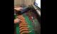 Nijemac od deset kobasica napravio klavir