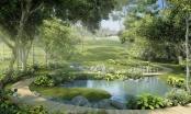 Brka: Umjesto divlje deponije uskoro botanička bašta