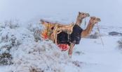 Pao snijeg u Saudijskoj Arabiji nakon 50 godina