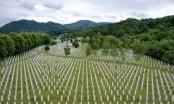 Memorijalni centar Srebrenica predstavlja film o masakru 12. aprila 1993.
