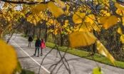 Stigla je prognoza do kraja novembra: Najava za jesen mogla bi vas iznenaditi